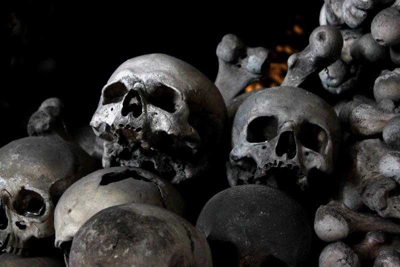 3300075-skulls-and-bones.jpg